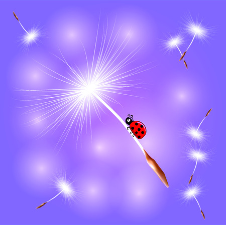 The ladybird flies on the dandelion seed on an abstract blue background. Spring, flight, dream Ilustracja