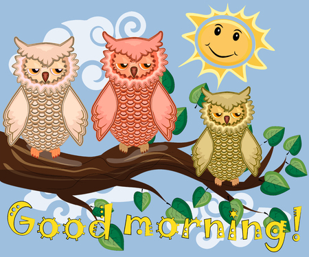 An unhappy, sleepy owl on a tree branch in the morning
