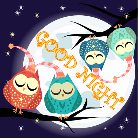 Good night card with full moon and cute owl.