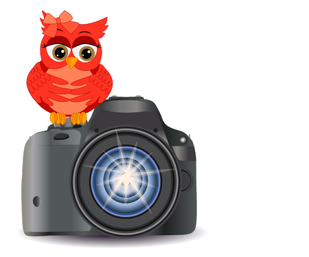 Owl sits on the button Start realistic, modern camera, isolated on white background with copy space. Illustration