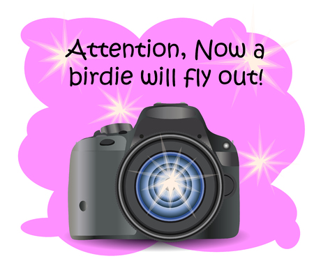 Realistic modern CAMERA on a pink background with flashes, digital photo camera, photographer equipment. Inscription Attention, the birdie will fly out right now 向量圖像