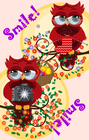 A red sweet owl wearing glasses and with a camera sits on a flowering tree branch, her owl girlfriend knitting a sock. Photo business, photographer, vocation, profession. Inscription Smile Ilustração