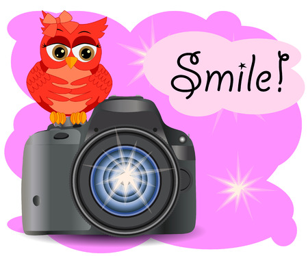 The owl sits on the Start button of a realistic, modern camera, on a pink background with flashes of copy space. Inscription Smile