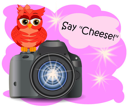 The owl sits on the Start button of a realistic, modern camera, on a pink background. Illustration