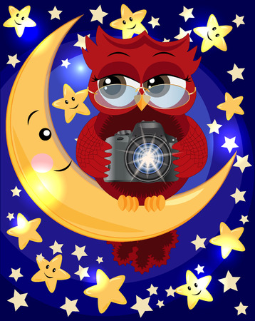 A red sweet owl wearing spectacles and with a camera sits on the moon in the middle of the night and the stars. Photo business, photographer, vocation, profession