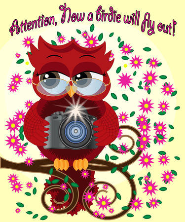 A red sweet owl with a camera sits on a flowering branch of a tree. Photo business, photographer, vocation, profession. Inscription Attention, the birdie will fly out right now