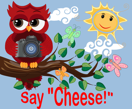 Red Owl-photographer in glasses sits on a tree branch on a clear sunny day and makes a report, photos. Inscription Say cheese Illustration