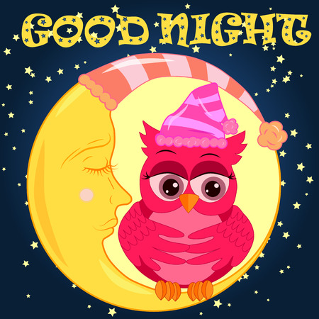 Good night card with sleeping moon and cute owl. Cute cartoon owl coquettish sitting dormant on the crescent against the night sky with stars Standard-Bild - 102628587