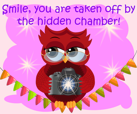 A red flirtatious cartoon owl sits on a garland of flags with a camera and photographs. Photographer, paparazzi, reportage.