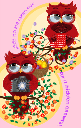 A red sweet owl wearing glasses and with a camera sits on a flowering tree branch, her owl girlfriend knitting a sock. Photo business, photographer, vocation, profession.