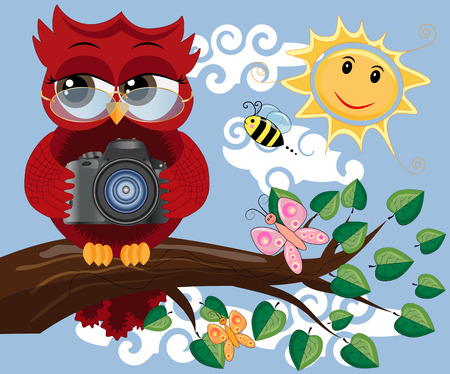 A red sweet owl with glasses and a camera sits on a tree branch on a clear sunny day. Photo business, photographer, vocation, profession
