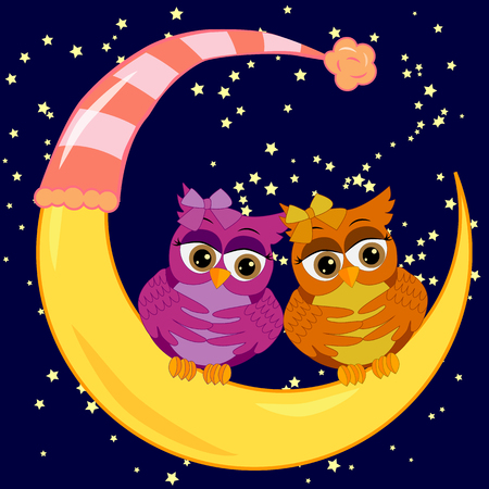 A pair of bright owls sits on a crescent moon in the night starry sky.