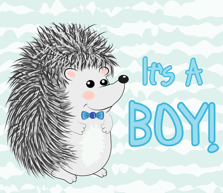 Baby Shower greeting card with a Cute hedgehog boy Ilustrace