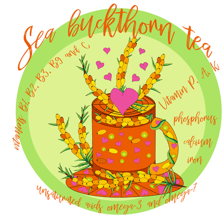 Cup of tea with Sea buckthorn. Hand drawn eco design