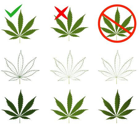 Set of leaves of marijuana, cannabis. Banned or permitted for medical and personal use.