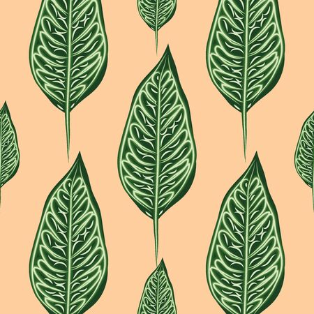 Seamless pattern, dark green, white Ficus Elastica leaves on light background Illustration