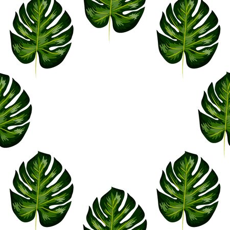 Tropical palm leaves, monstera, seamless floral summer pattern background