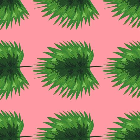 Tropical palm leaves, monstera, jungle leaf seamless floral summer pattern background