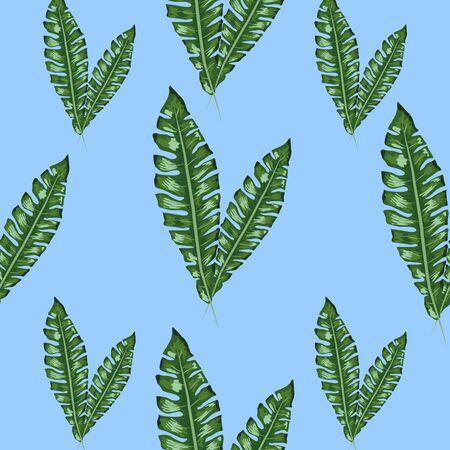 palm frond. Tropical leaves seamless pattern. Banana leaf background. Exotic design isolated. Hawaiian print. Jungle plants. Summer illustration. Çizim
