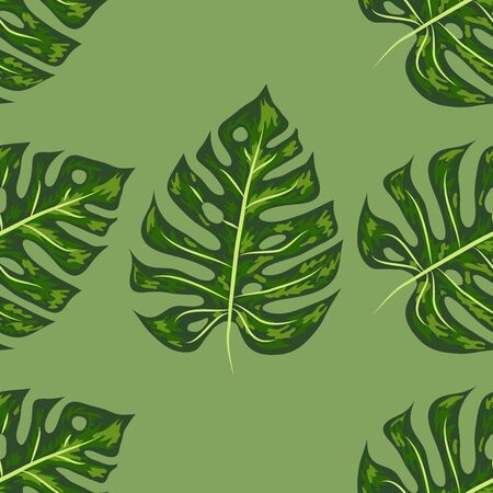 Tropical Pattern. Seamless Texture with Bright Hand Drawn Leaves of Monstera. Çizim