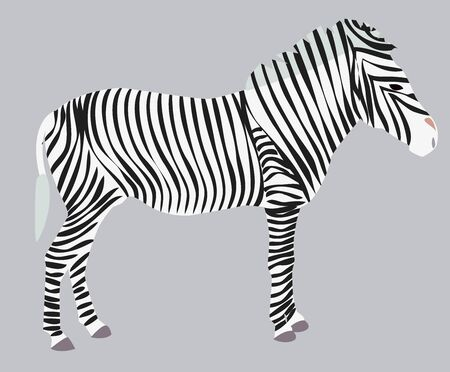 Sketch wild animal zebra print, silhouette. Wild African animals Illustration