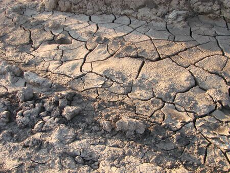 Dried cracked earth soil ground texture background. Mosaic pattern of sunny dried earth soil Фото со стока