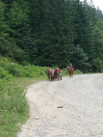 Horse carriage ride in beautiful mountain valley in Carpathians