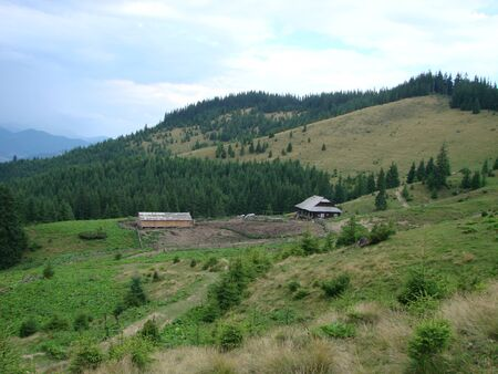 Wooden shepherd house in a mountains. Traditional small hut in Carpathian mountains on green meadow called Polonyna or montane meadow. Traditional rural landscape in mountains. Carpathians, Ukraine.