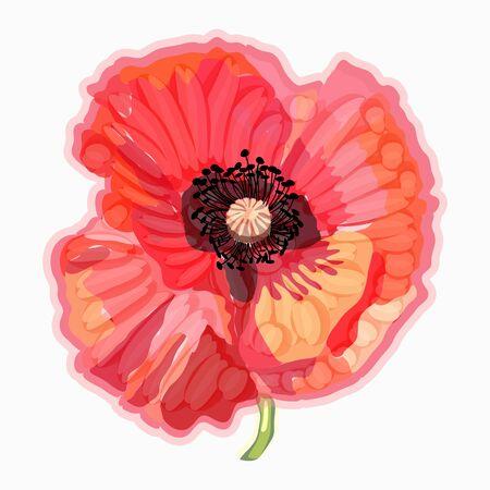 Red flower. Poppy. Watercolor floral illustration. Floral decorative element.