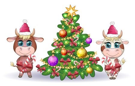 Cute cartoon cow and bull, near a Christmas tree with candy and in Santa's hat. Symbol of the year 2021 according to the Chinese calendar