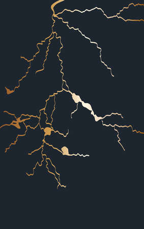 Gold kintsugi cover design vector. Luxury golden marble texture. Crack and broken ground pattern. Rectangular, lightning, black and white. Business card, social media background