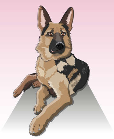 dog German shepherd breed sitting and smile