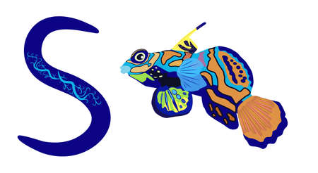 Letter S lowercase cute children colorful zoo and animals ABC alphabet tracing flashcard of Mandarin fish for kids
