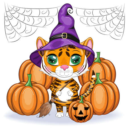Cute cartoon tiger with beautiful eyes, orange in a purple cloak and witch's hat, with a broom and pumpkins. Halloween 2022. Ilustración de vector