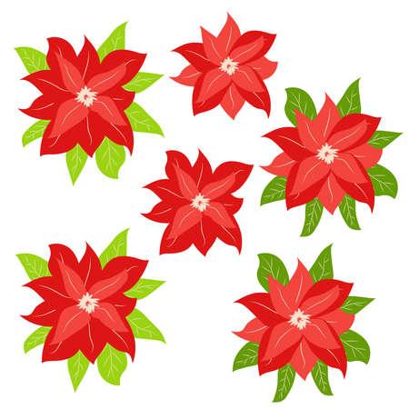 Hand drawn Poinsettia, Christmas Star. Christmas and holiday decor