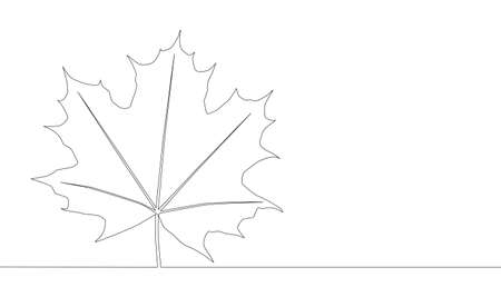 Self drawing animation of one line drawing of isolated object maple leaf.