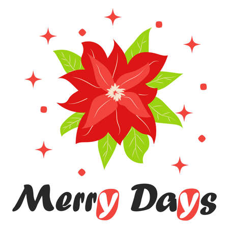 Traditional Christmas poinsettia flower with green leaves and red petals. Cute winter poster, Christmas card, banner, sticker, gift tag.