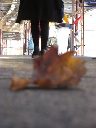 A picture of legs walking on a train platform behind a blurry dry leaf Banco de Imagens