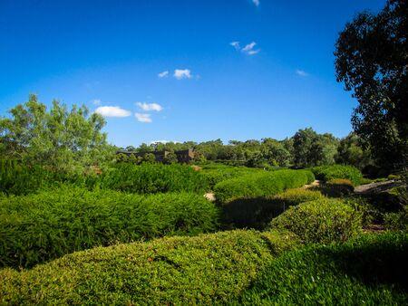 A view of Cranbourne Botanic Garden Visitors Center surrounded by lush bush plants