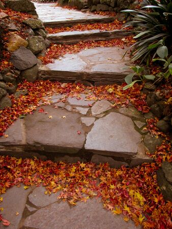 A view of garden stone steps covered by autumn leaves. The steps are made of wide stone tiles. Staircases can be used to symbolize achievements, a link of heavens and earth or spiritual enlightenment 免版税图像