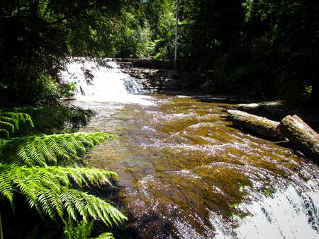 Downstream water of Liffey falls or previously called Tellerpangger by the Tasmanian Aborigines. Suitable for spa image or to illustrate a dream meaning. Waterfall symbolizes of letting things go