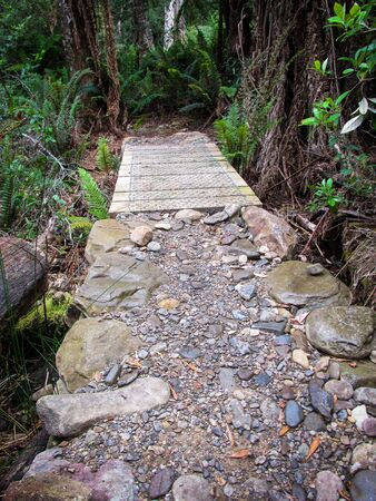Foot trail for visitors to Liffey Falls. Suitable to illustrate the benefit of exposure to nature. Immersion to nature is therapeutic, reduces stress, increases mental health and sense of community