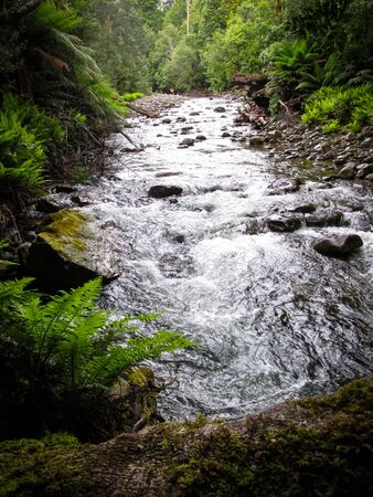 Flowing stream of Liffey Falls or previously called Tellerpangger by the Tasmanian Aborigines. Suitable for spa image or to illustrate a dream meaning. Waterfall symbolizes of letting things go
