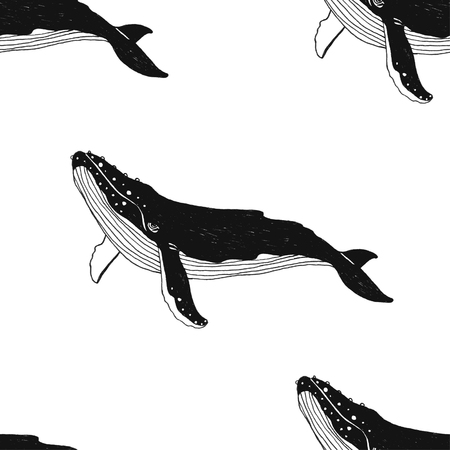 Vector seamless pattern with hand drawn illustration whale. Black contour art-work isolated on white background.