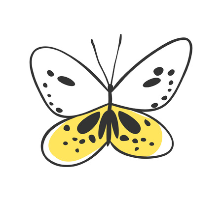 art work: Isolated butterfly.illustration. Decorative elements for design. Black contour drawing. Creative ink art work