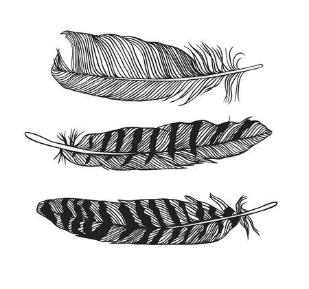 Black and White doodle illustration. Hipster black Ink art work. Cute tribal vector illustration. Hand Drawn set of boho feathers