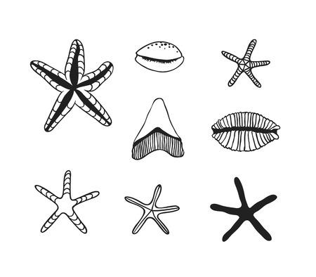 Black contour nautical illustration. Black Ink art work. Hand Drawn boho illustration. Vector set of sea trophy. Ink drawing Illustration
