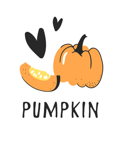 Hand drawn set of vegetable and text. Vector artistic drawing pumpkin
