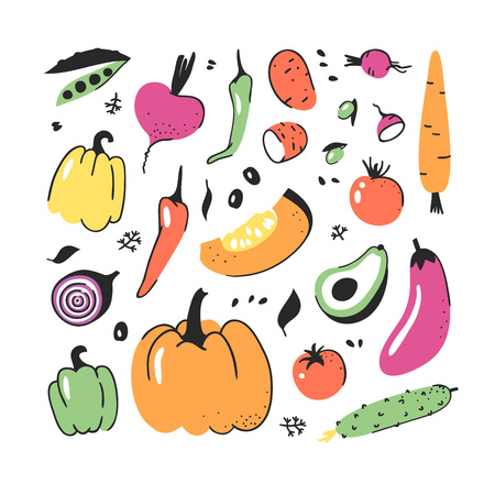 Hand drawn set of vegetable. Vector artistic drawing food. Summer illustration Illustration