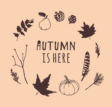 Hand drawn Autumn illustration and lettering. Creative ink season art work with text AUTUMN IS HERE. Actual vector quote about Fall Vettoriali